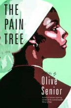 Olive Senior book cover image